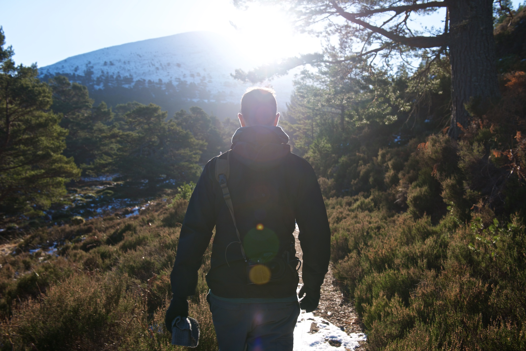 A photo taken from behind as Chris walks ahead. The sun is directly ahead causing Chris to be mostly silhouette with brightly lit edges of his body. The surrounding countryside is fresh with evergreen trees and a snowy mountain in the background.